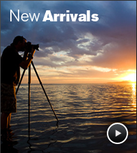 new_arrivals.png